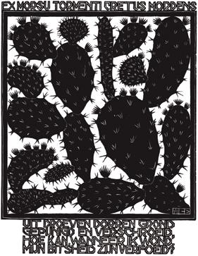 XX Cactus