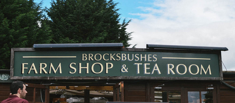 Brockbushes Farm – Strawberry Picking