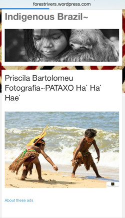 Indígenous Brazil