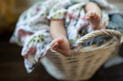 Chandler Newborn Photographer