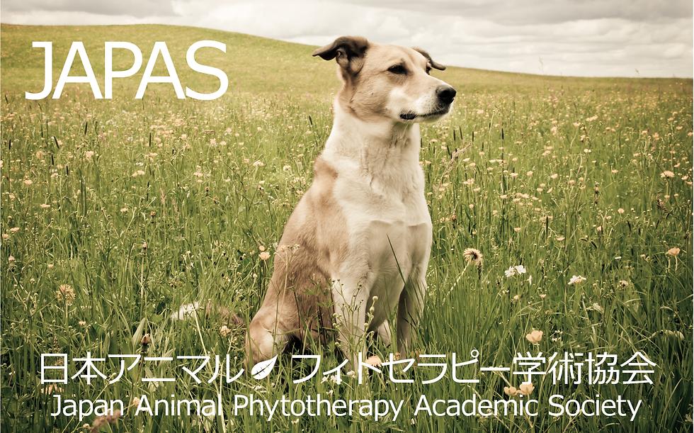 日本アニマル  フィトセラピー学術協会