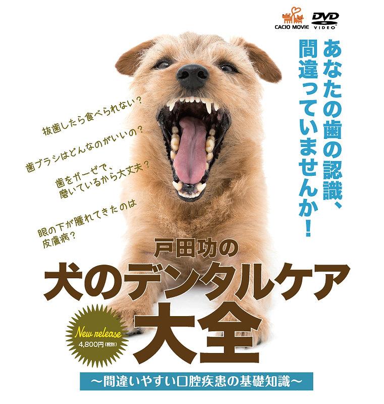 戸田功の歯のデンタルケア大全