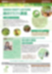 JAPAS緑のクラフト講座&課外講座