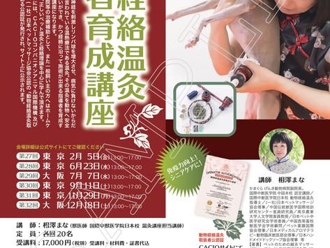 『動物経絡温灸取扱者育成講座』 CACIO&JPMA公認講座