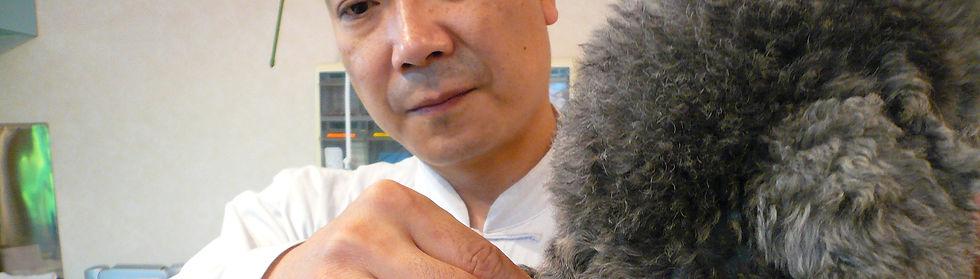 JPMA(一社)  日本ペットマッサージ協会  国内活動