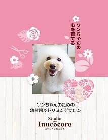 Vol.5 亀川紗希