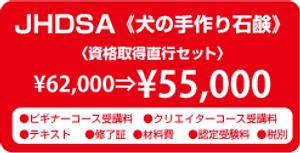 JHDSA資格直行セット