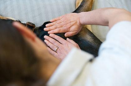 Behandlung_Hund5klein.jpg