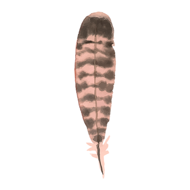 Feather 7