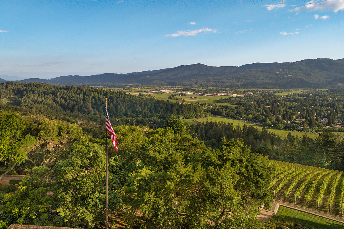F01 840 Meadowood Ln Day 2 Drone-18-HDR