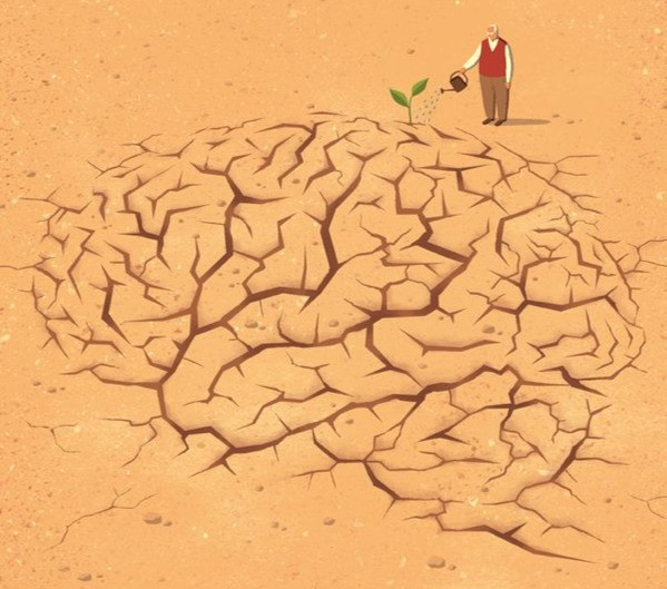Mental health and more : How to (Positively) construct a mindset for success