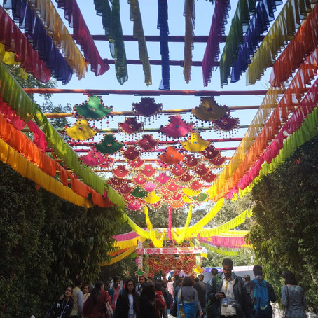 Top 7 things to do in Jaipur , Rajasthan