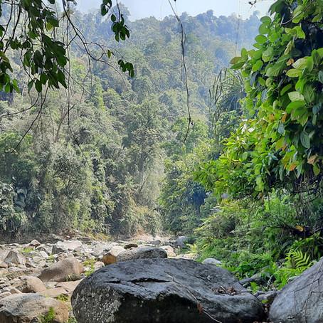 Travel Tales : My Journey from Delhi to Arunachal Pradesh!