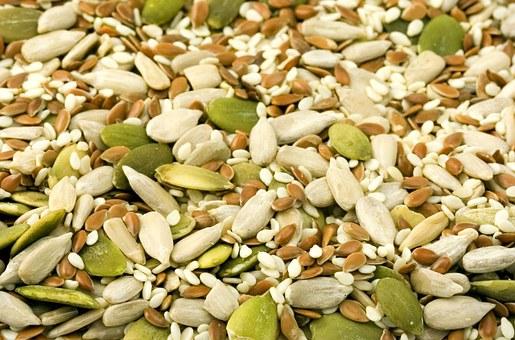 seed-1716__340