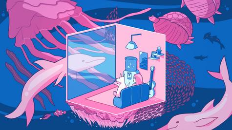 Home Aquarium (2020)