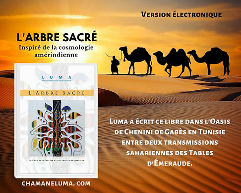 Livre l_Arbre_Sacre de chamane Luma