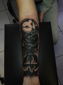 Cover up Eule