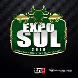 expo-sul-giovaney