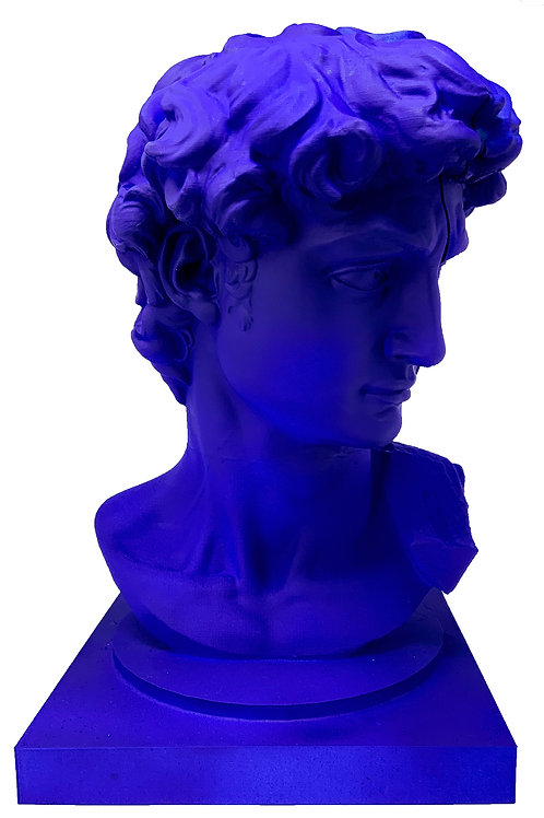 David Michelangelo Speaker (SOLD)