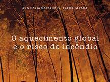 o aquecimento global.png
