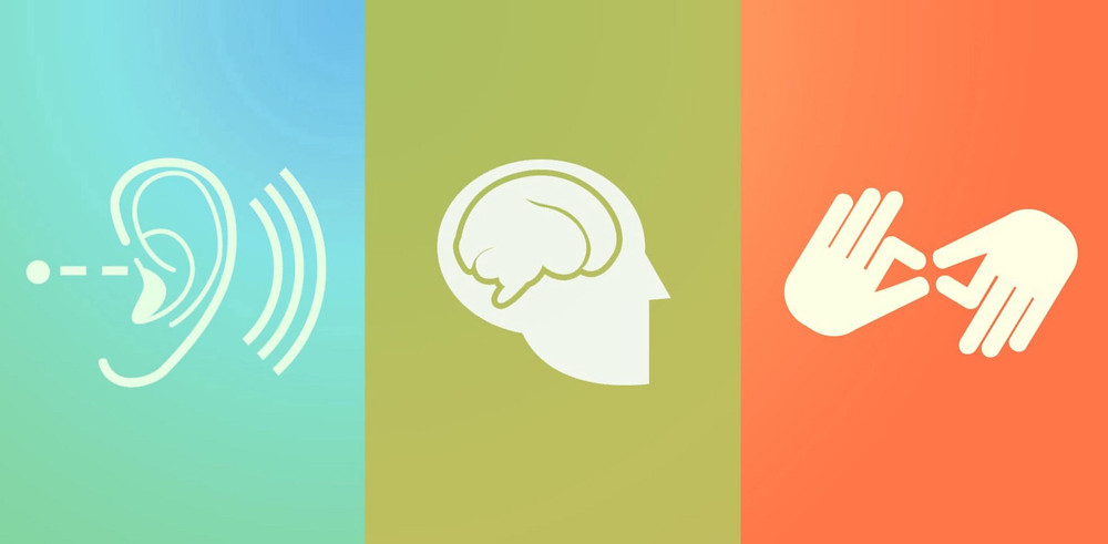 symbol of ear, brain and hands signifying different types of users