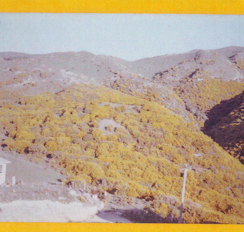 School site 60s.png