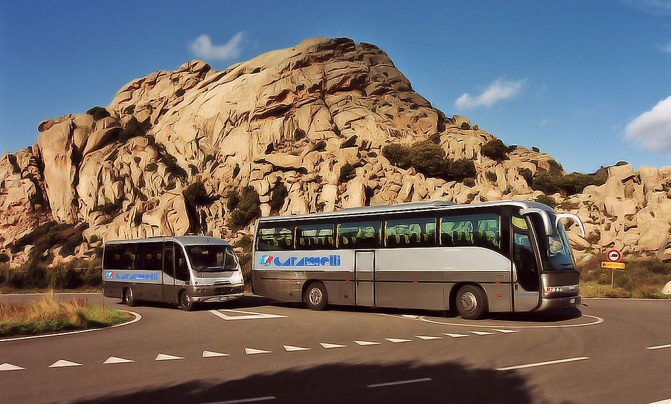 Caramelli Tours snc