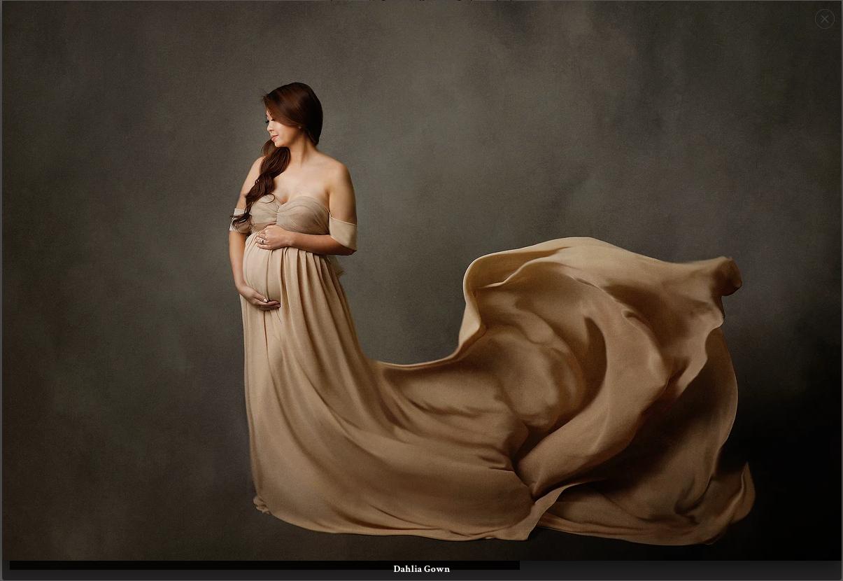 Ana Brandt Dahlia gown