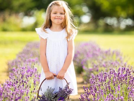 Lavender sessions