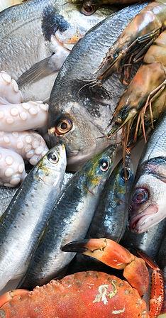 Tehnik pengawetan ikan & seafood