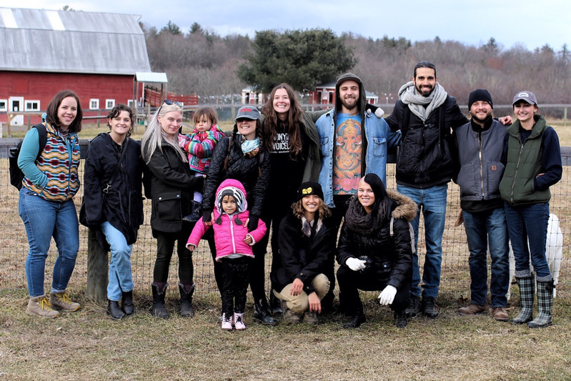 Trip to Woodstock Farm Sanctuary
