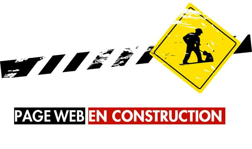 construction_lmresized_2.png