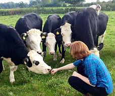 Elizabeth Kucinich farm cows england