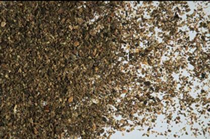 African Aloe Ferox Tea