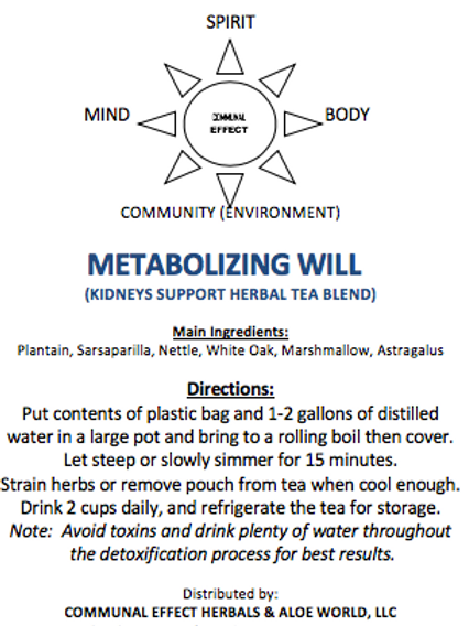 Metabolizing Will(Kidney)