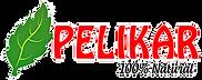 pelikar-logo.png