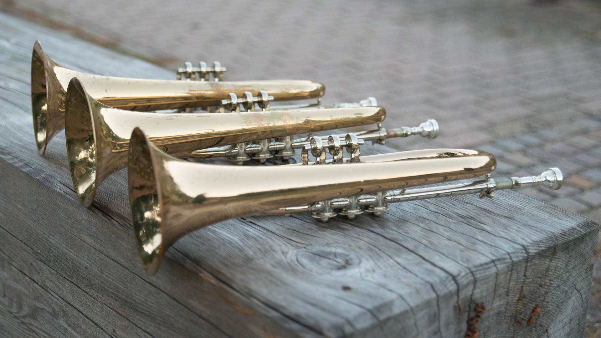 Trompeten  Trachtenkapelle Nordrach