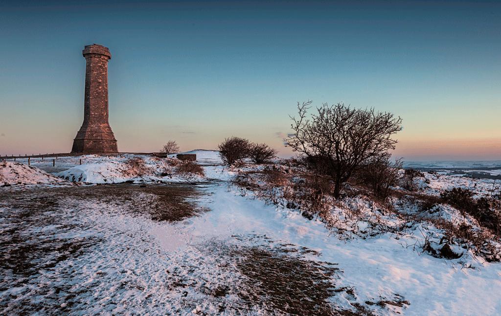 Winter-Hardy's