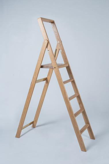 JT-Library-Ladder_2.jpg