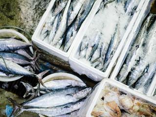Sustainable fishing methods