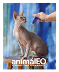 animal eo cat.png