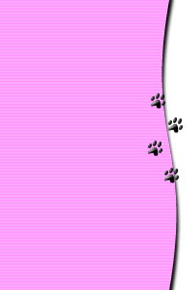 paw border.jpg