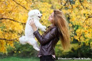 3 Things Never to Do When Picking Up Your Dog