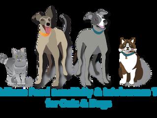 FOOD SENSITIVITIES IN YOUR PETS!