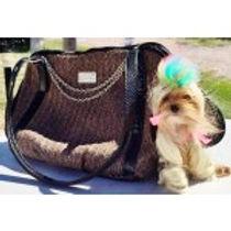 dog in bag.jpg