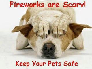 THE BIG BANG OF FIREWORKS        KEEP THEM SAFE!