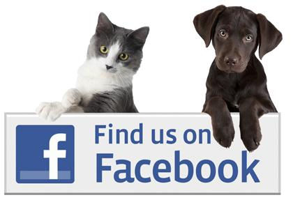 cat dog fb like icon.jpg