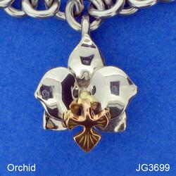 COM JG3699.