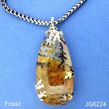 JG6224.JPG