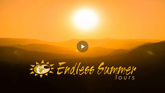ENDLESS SUMMER TOURS